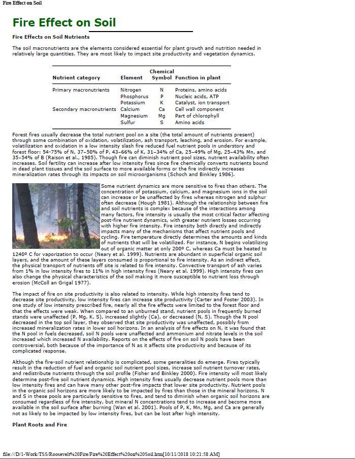 Fire Effect on Soil.JPG