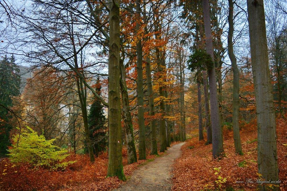 Goethova cesta (Goethe's Path)