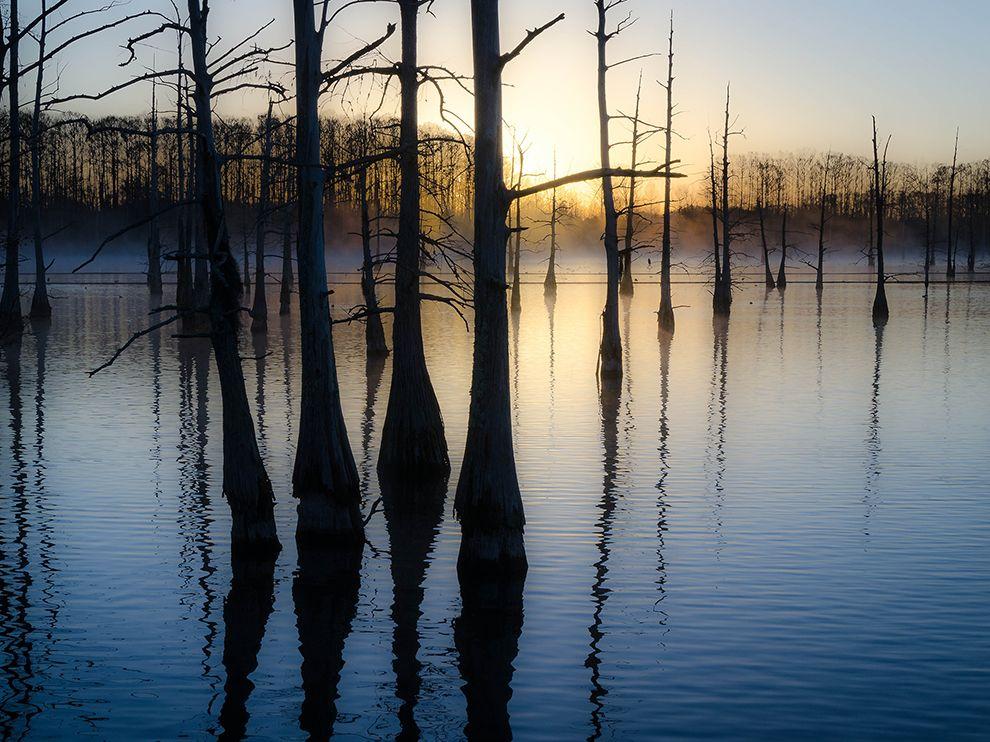 black-bayou-lake-louisiana