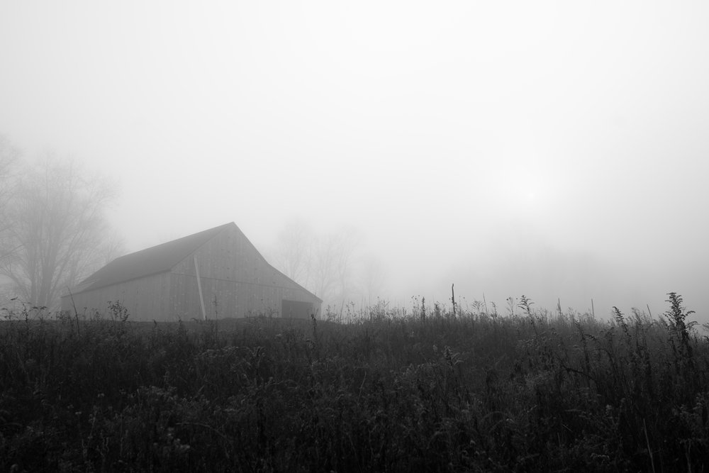 barn_in_fog.jpg