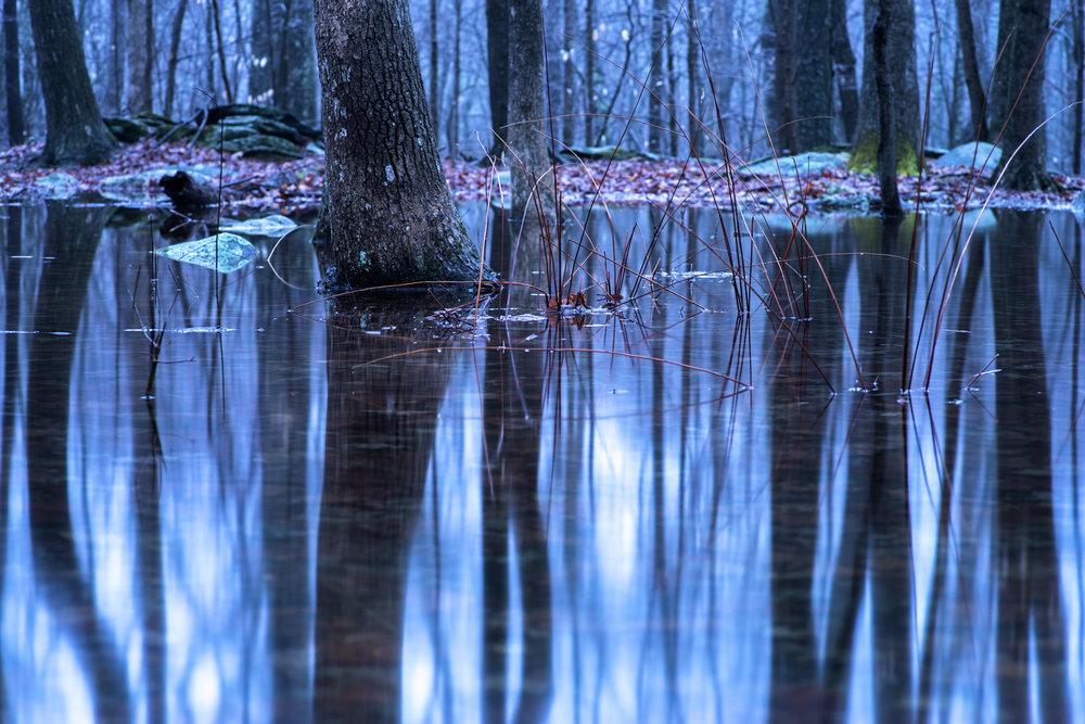twilight_reflections_working_2_6_18.jpg