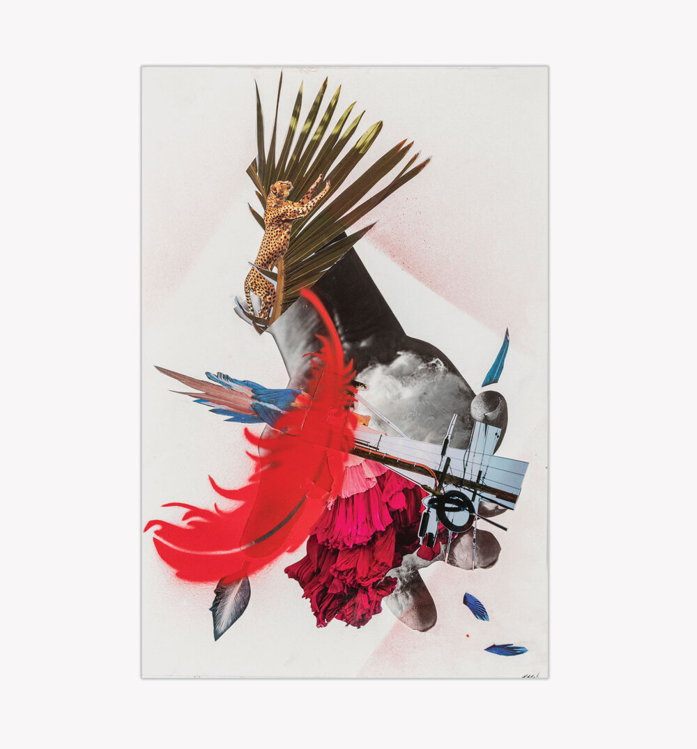 Bird Out of Hand,  mixed medium collage on paper, 2017, 15x11
