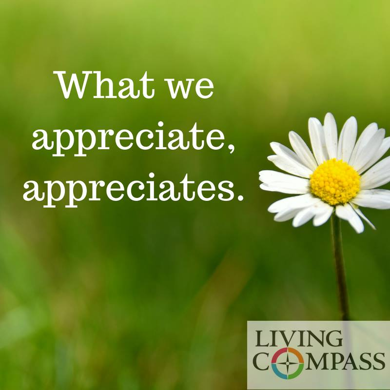 What We Appreciate Appreciates.jpg