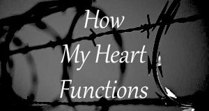 heartfunctions.jpg