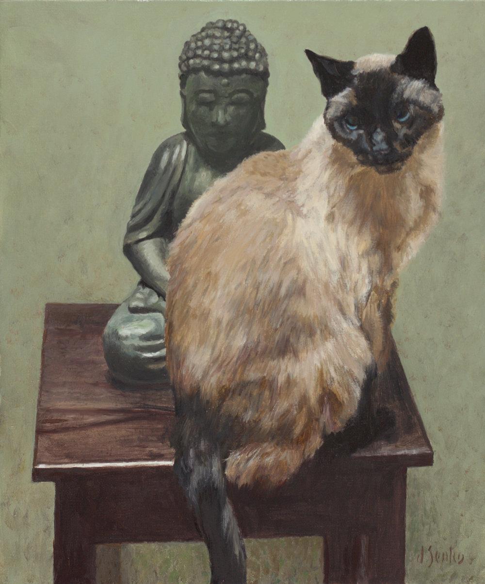 Siamese & Buddha