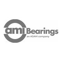 AMI-Bearings.jpg