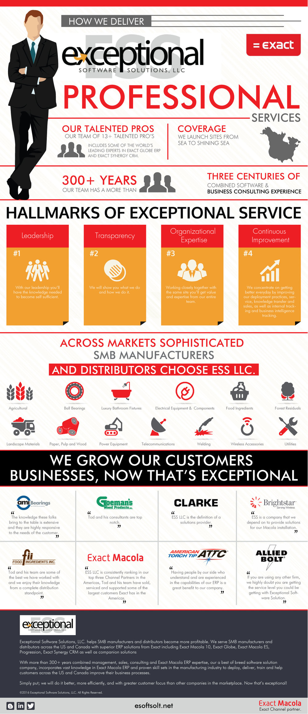 how ess deliver professional services -