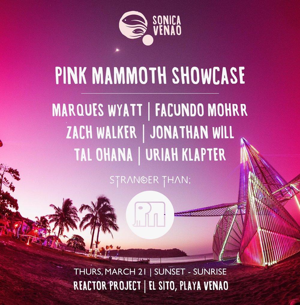 Pink Mammoth - Zach Walker - Sonica Venao.jpeg