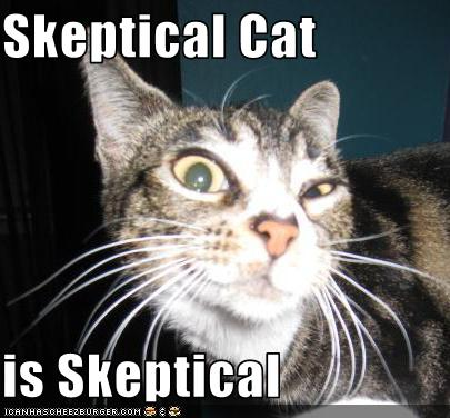 skeptical-cat.jpeg