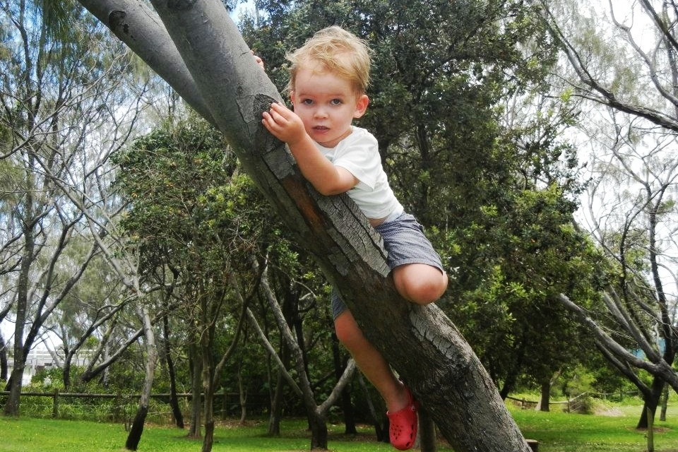 Playground Advisory and Inspection Services - Kidsafe Qld is committed to increasing safety in play environments and to promoting the benefits of play for children.Kidsafe Qld offers playground inspection, advice, design consultancy, speaking engagements and training.