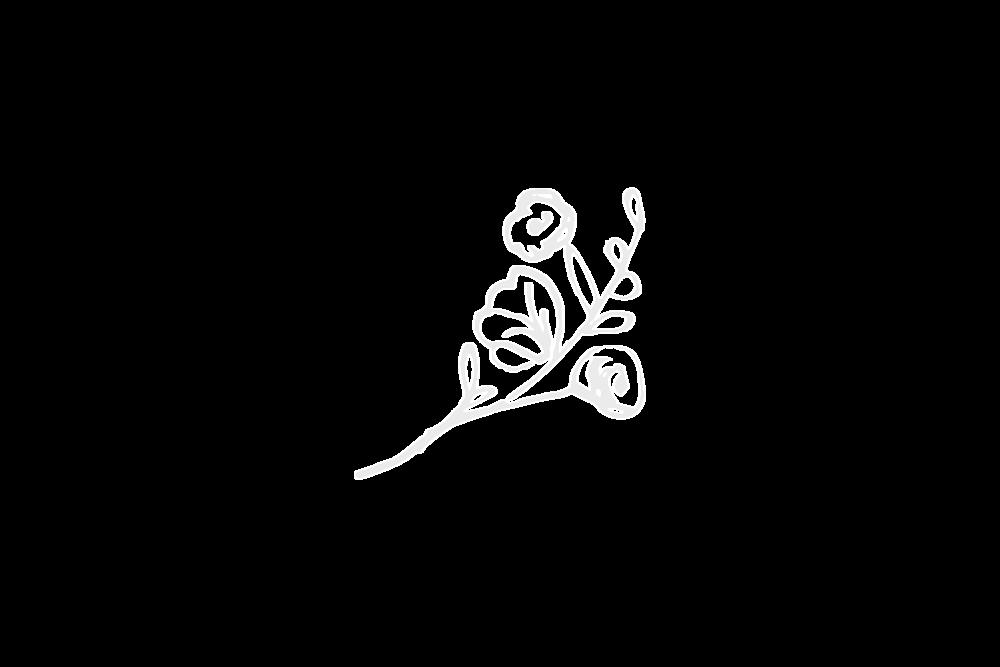 Kukkasidonnan ammattilainen - Rosa sijaitsee Vanhan Rauman sydämessä torin lähellä. Rakastamme kukkia ja teemme sidontatöitä isolla sydämellä. Meiltä löydät tuoreet leikkokukat, viherkasvit ja kukkivat ruukkukukat.Taitavan henkilökuntamme käsissä valmistuu kauniit kimput, asetelmat ja muut kukkasidonnat.