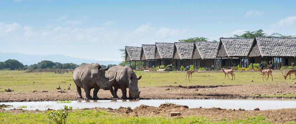 Selous-Game-Reserve-Tanzania horizon-Safaris-5.jpg