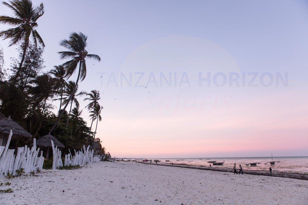 Tanzania Horizon Safaris Zanzibar (11).jpg