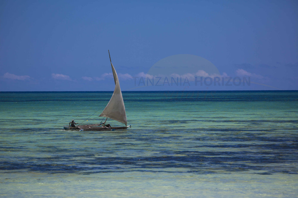 Tanzania Horizon Safaris Zanzibar (14).JPG