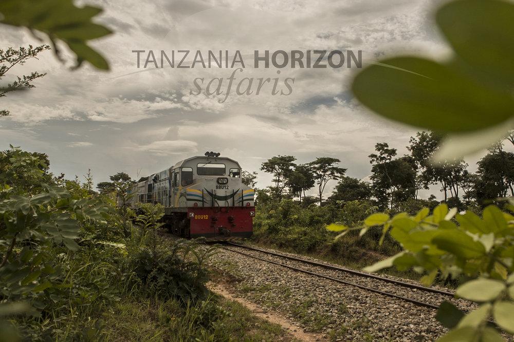 Tanzania Horizon Visit Tanzania by Train (4).JPG