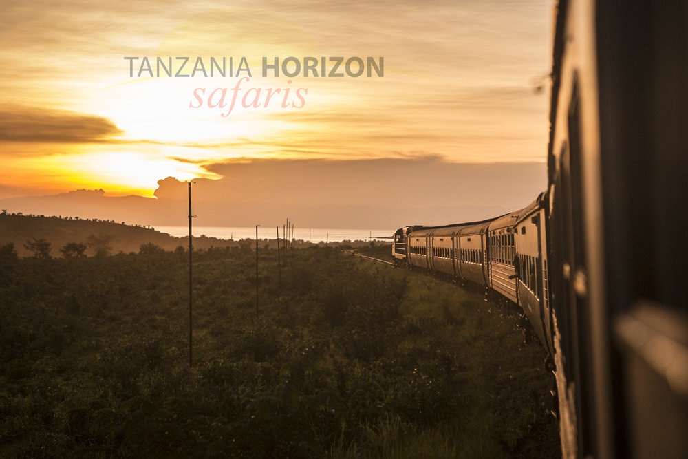 Tanzania Horizon Visit Tanzania by Train (5).JPG