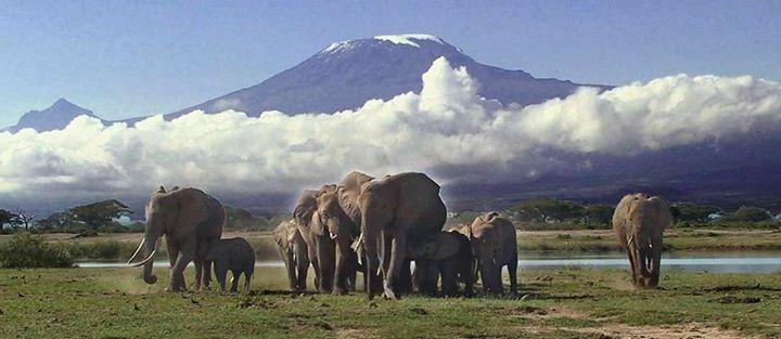 www.tanzania-horizon.com