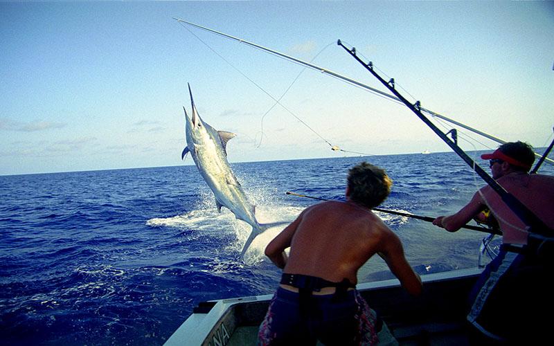 Zanzibar Fishing Tour -