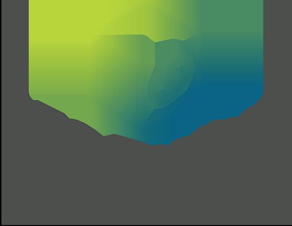 SEO Toolbox.png