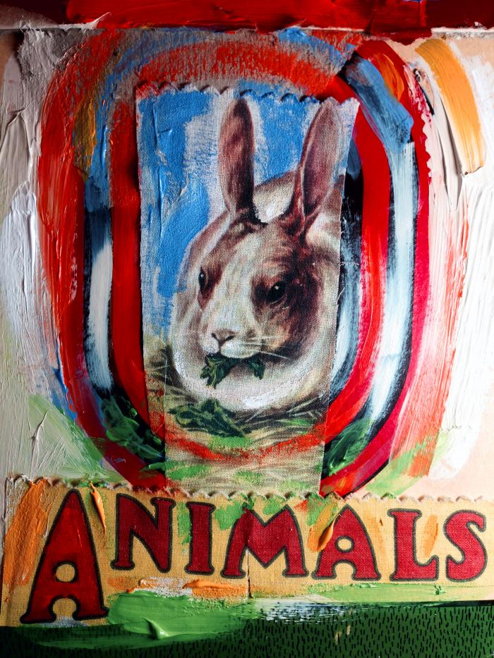 rabbitanimal.jpg
