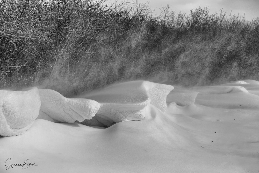 Wind blown snow drifts
