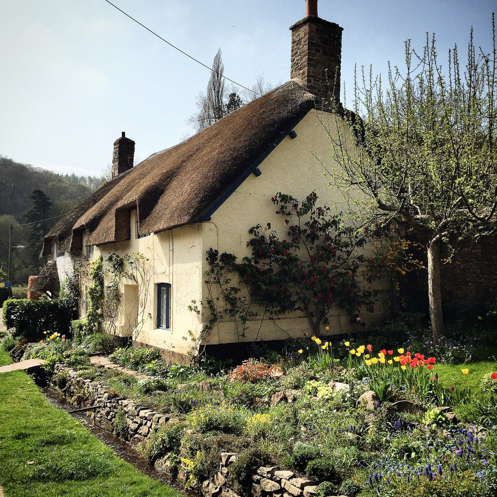Cottage in Dunster