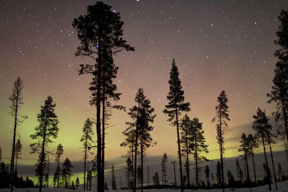 aurora Sweden-4.jpg