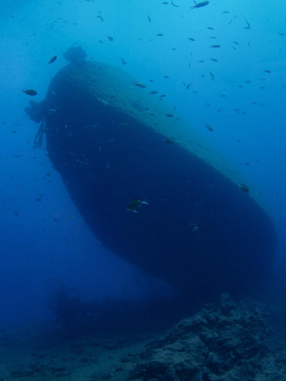 underwater lanzarote-5.jpg