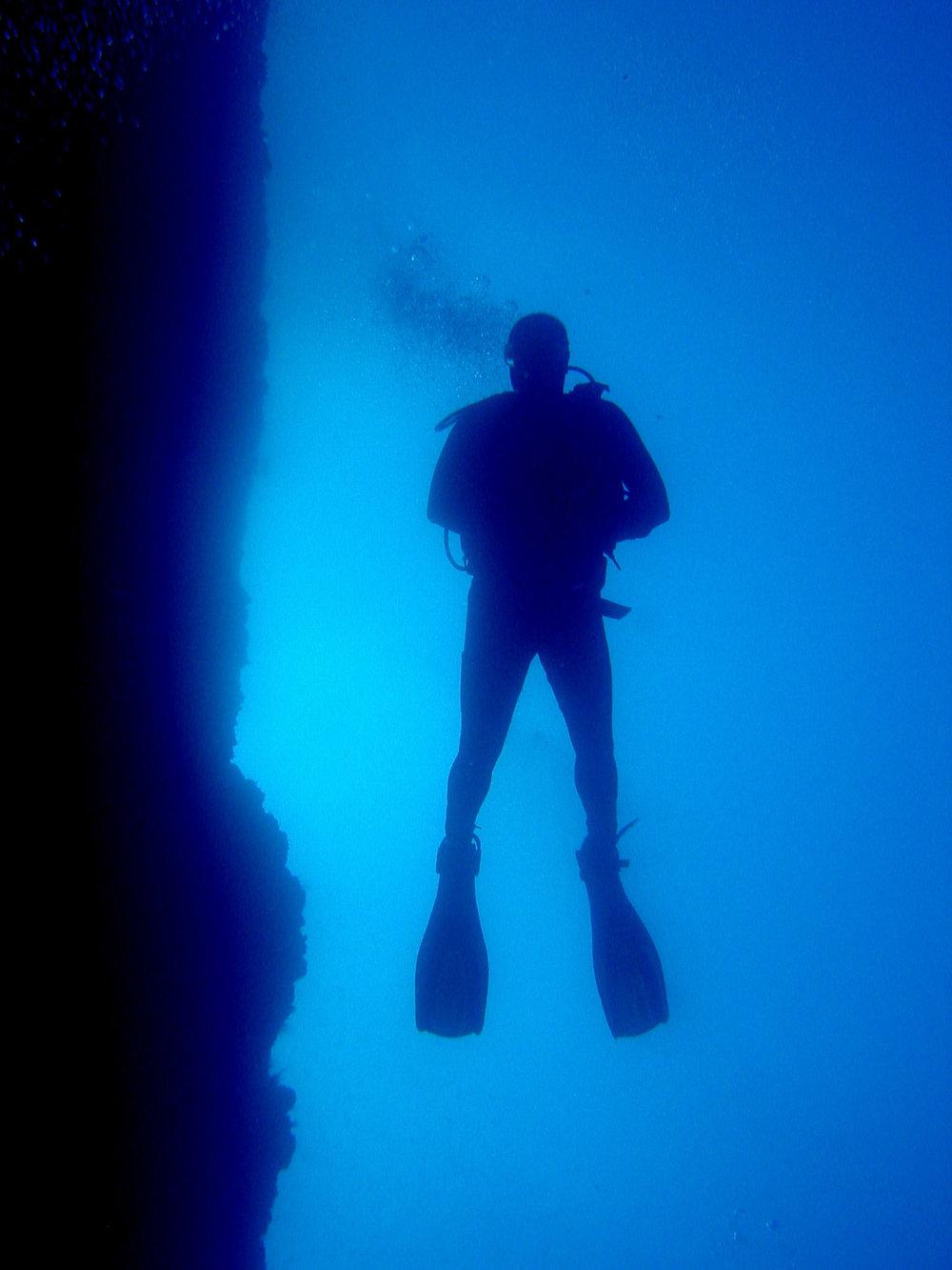 underwater lanzarote-10.jpg