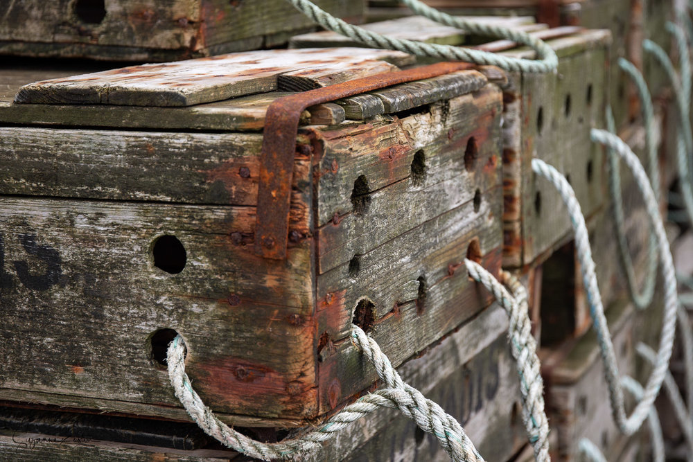 Orkney Fish boxes