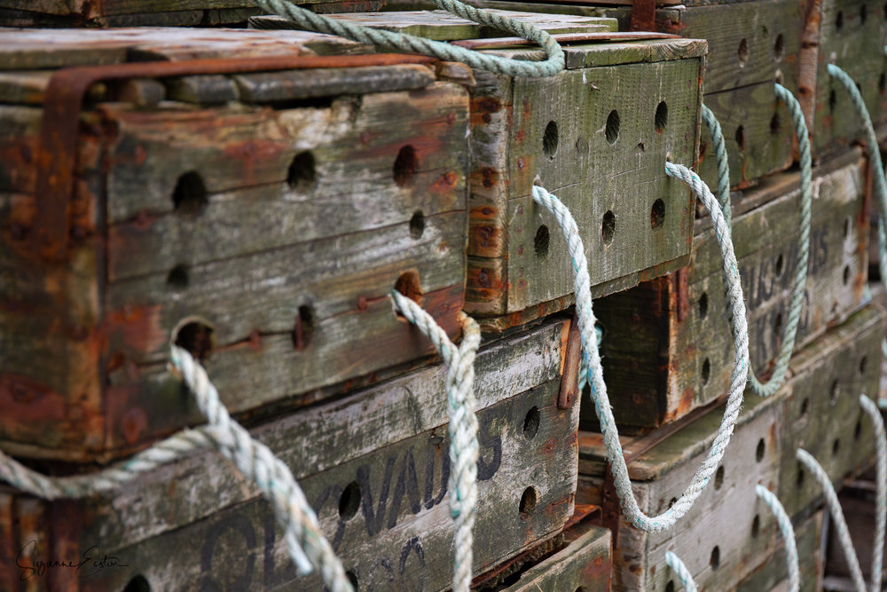 Fish boxes on Sanday, Orkney