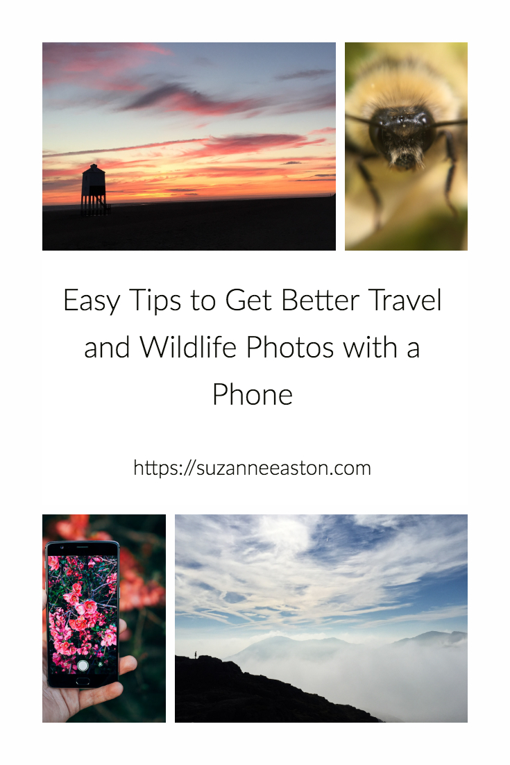 A phone is sometimes the only camera you have with you. However it is sometimes the best option for capturing the moment. Here are some easy tips to make your images better