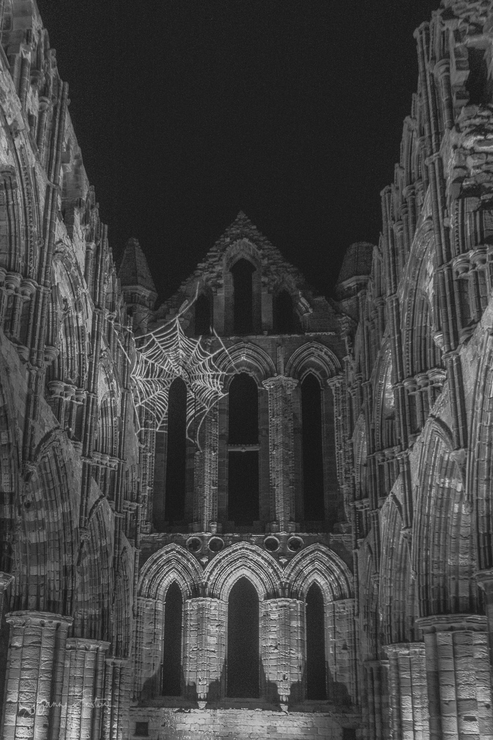whitby abbey-7.jpg