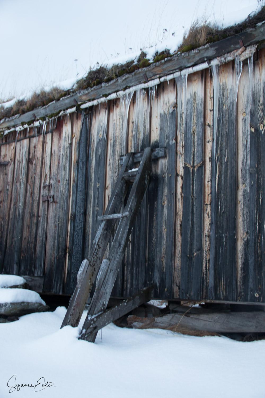 wooden-3.jpg