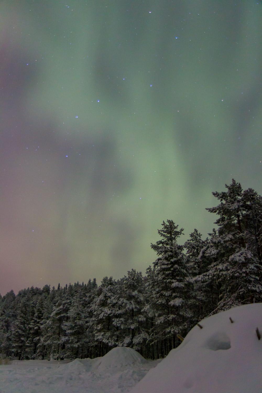 Pastel aurora