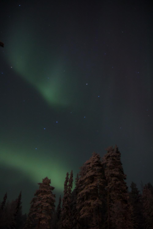 Dark sky aurora
