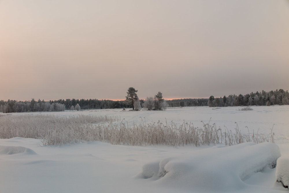 A frozen lake ideal for winter skiing or snowshoeing