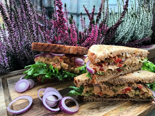 Breakfast today 😍😍😍 Chickpea tuna sandwiches🥪💜🌱 You can check out this amazing Chickpea tuna salad recipe from my blog🍃 link in BIO🍃 • • • • • #lifebasedfoods #lifebasedfood #vegan #plantbased #vegantunasandwich #chickpeatuna #chickpeas #veganbreakfast #whatveganseat #autumncolors #healthyfood #veganrecipes #homecooking #picoftheday #veganvibes