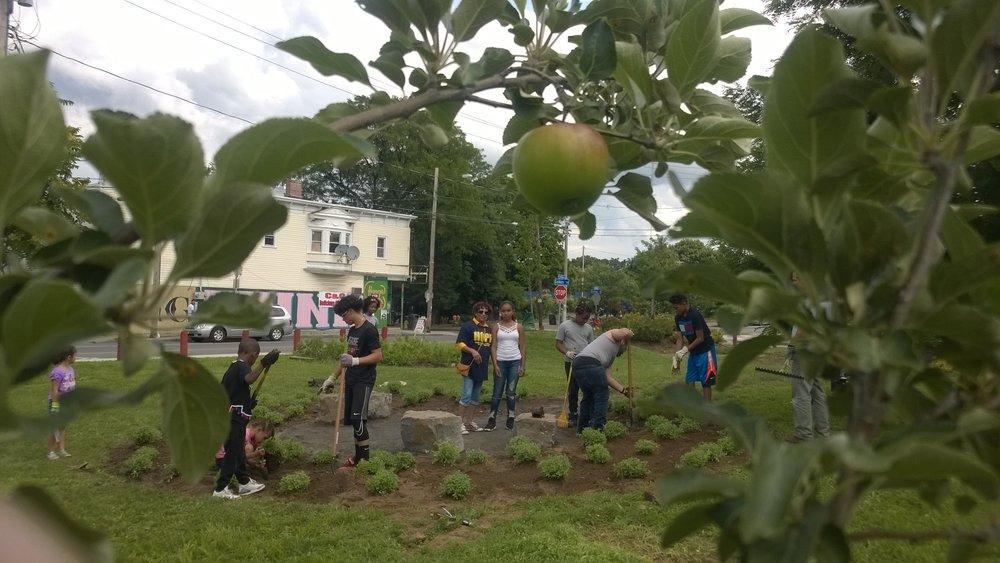 from vacant lot to garden spot genesee land trust - Garden Spot