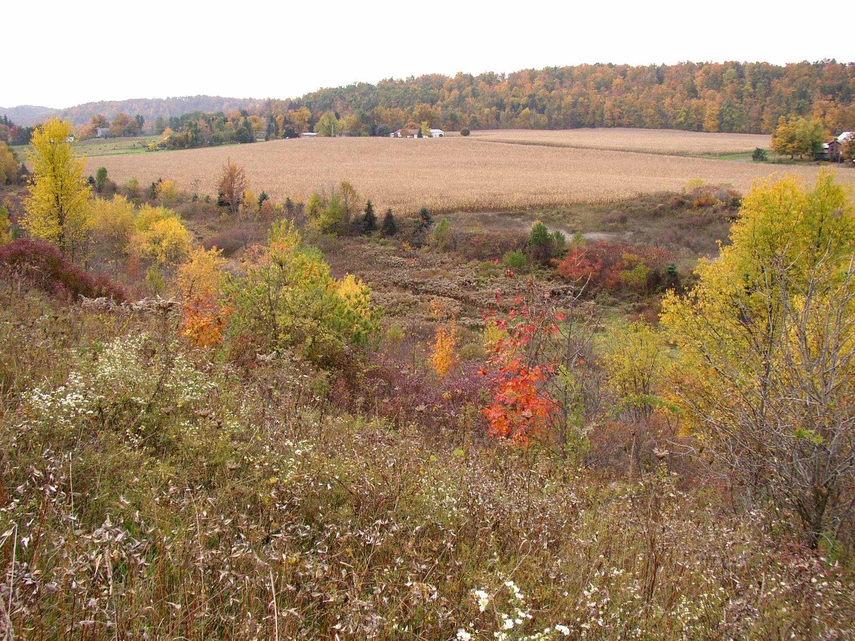 Crowfields — Genesee Land Trust