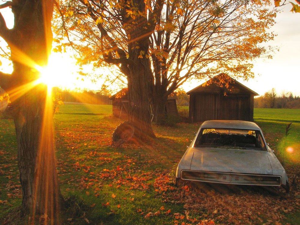 walworth farm sunset 110407 IMG_5405.jpg