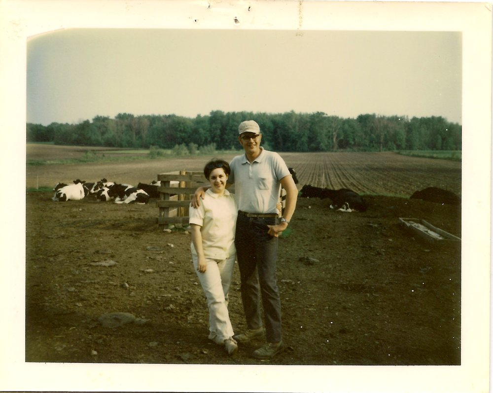 Larry and Diane DeMinck when first bought the farm - color.jpeg