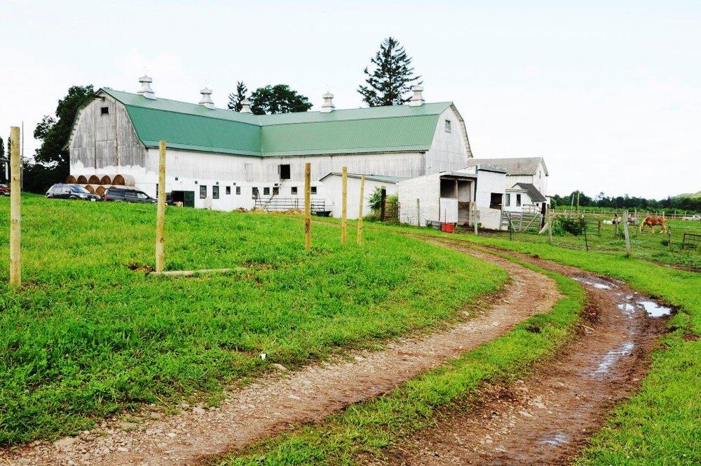 Alasa Farms 082409 5_DSC2428 (Copy).jpg
