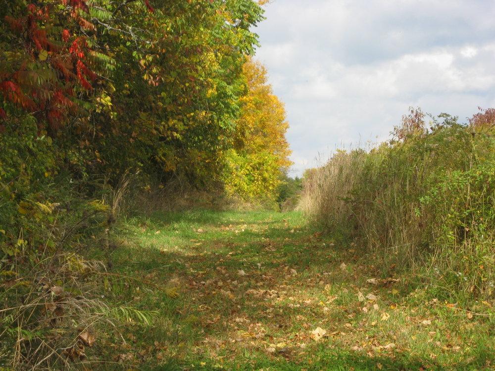 October 2012 025.jpg
