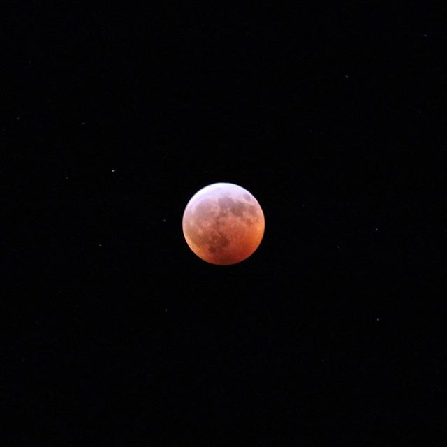"""Rare Super Blood Wolf Moon Total Lunar Eclipse of 2019."" They went all out when they named this one folks.  #lunareclipse #bloodmoon #nasa #space #angrymoon #wolfmoon #supermoon #nofilter"