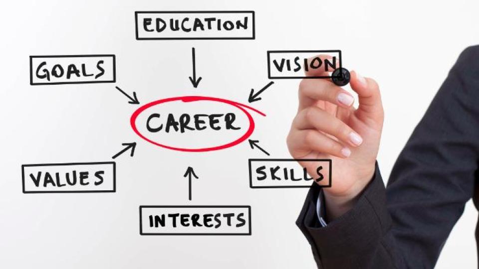 Individualized Career Plan -