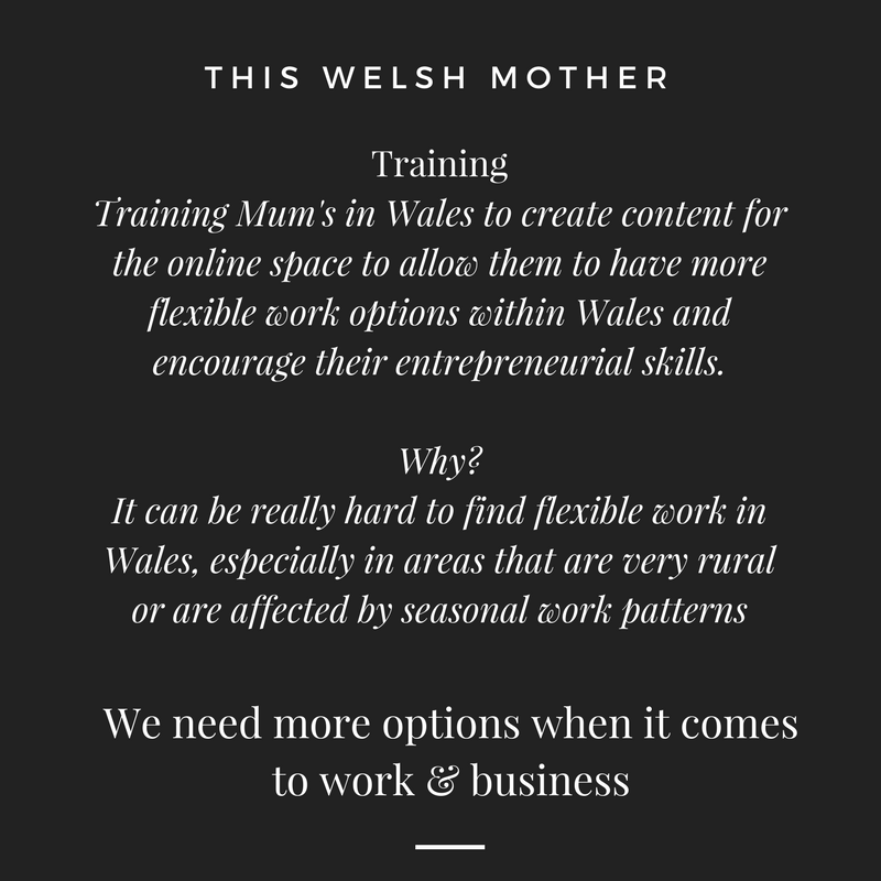 Phase 3 - The giving back stage. I'm meeting with Business Wales in May to discuss how I can go about launching a training arm of what This Welsh Mother does