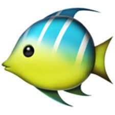 fish-emoji.jpg