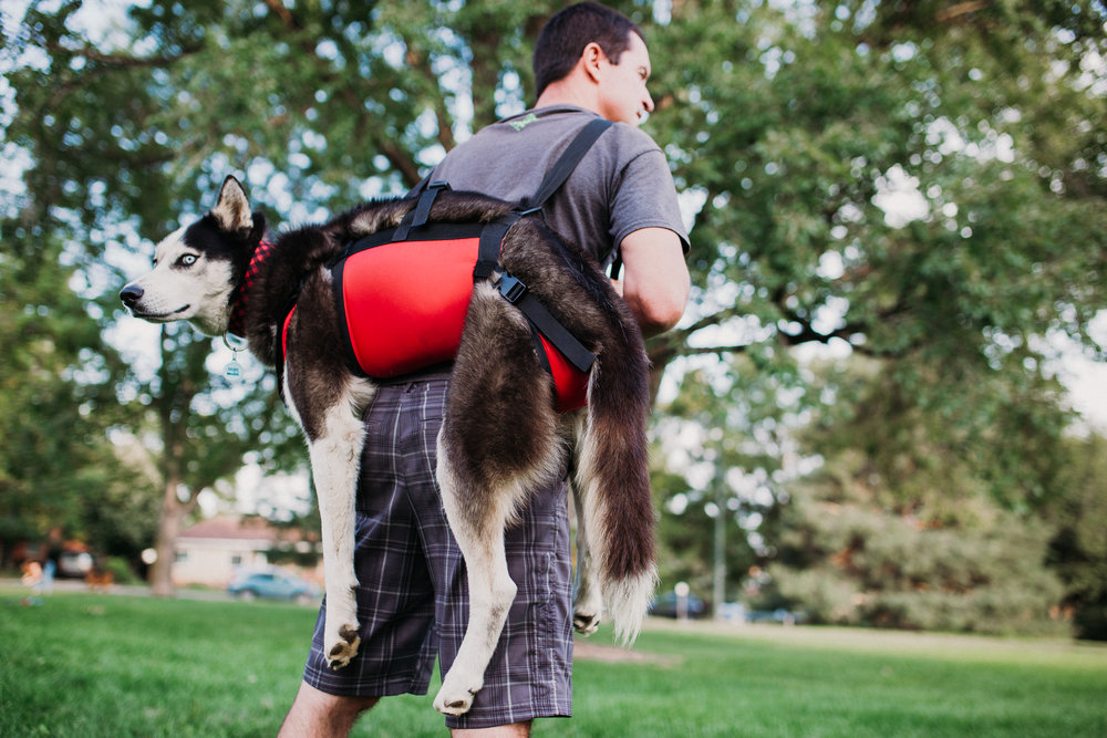 ULTRA LIGHT-WEIGHT RESCUE HARNESS FOR ERGONOMIC CARRYING