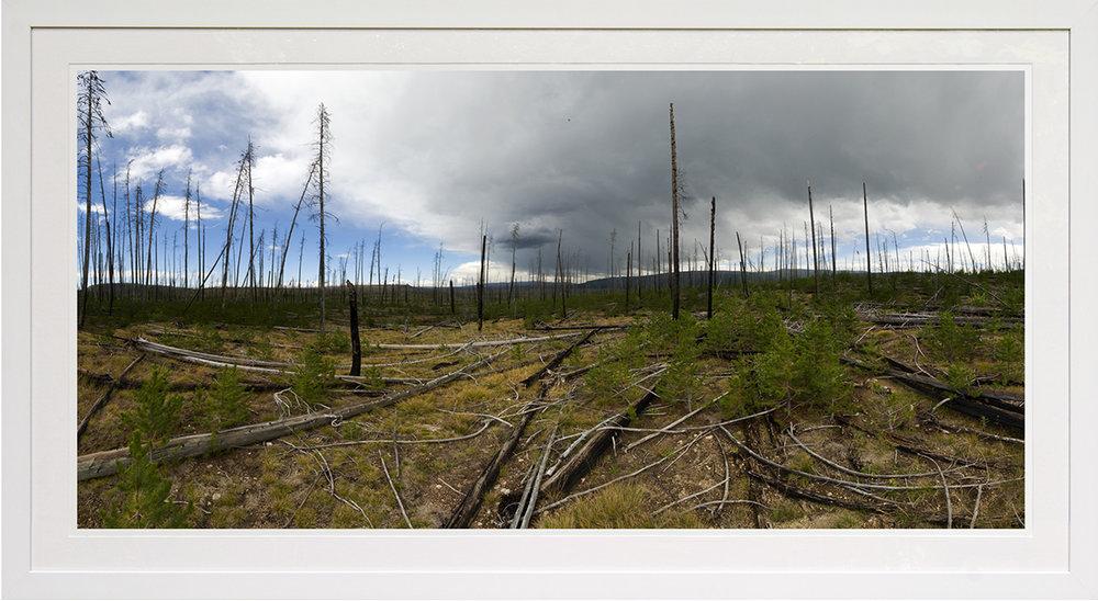 burnt spires: rockefellar gateway national forest, wy